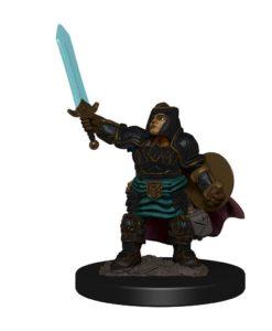 D&D Icons of the Realms Premium Miniature pre-painted Dwarf Paladin Female Case (6)