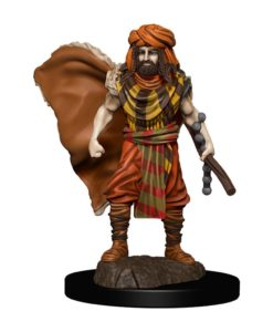 D&D Icons of the Realms Premium Miniature pre-painted Human Druid Male Case (6)